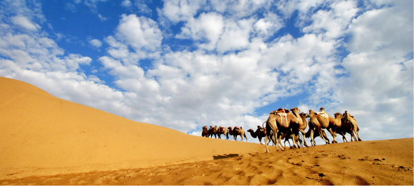 沙漠旅游7日经典行程